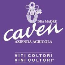 logo caven 22